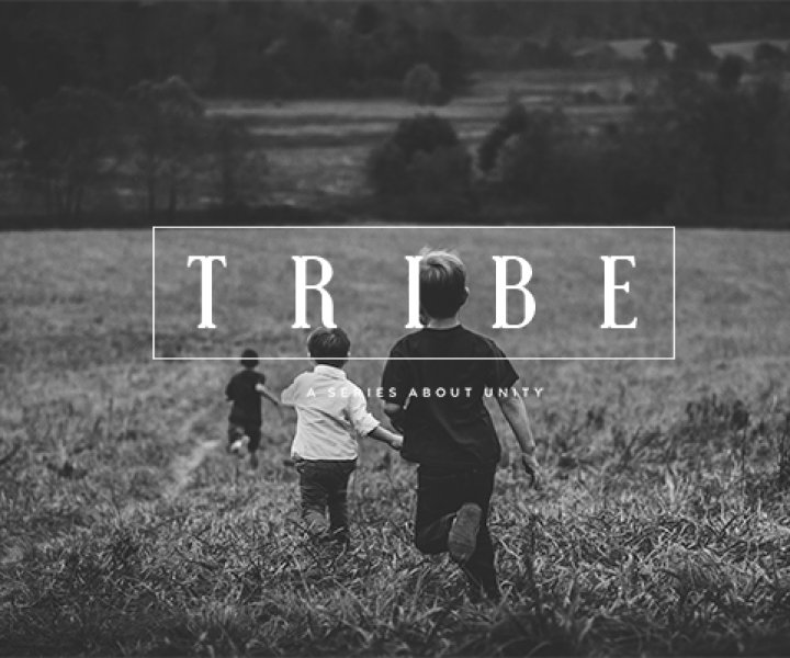 Tribe Message Series on Unity